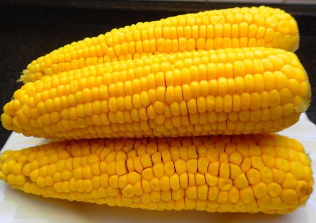 Вареные початки кукурузы